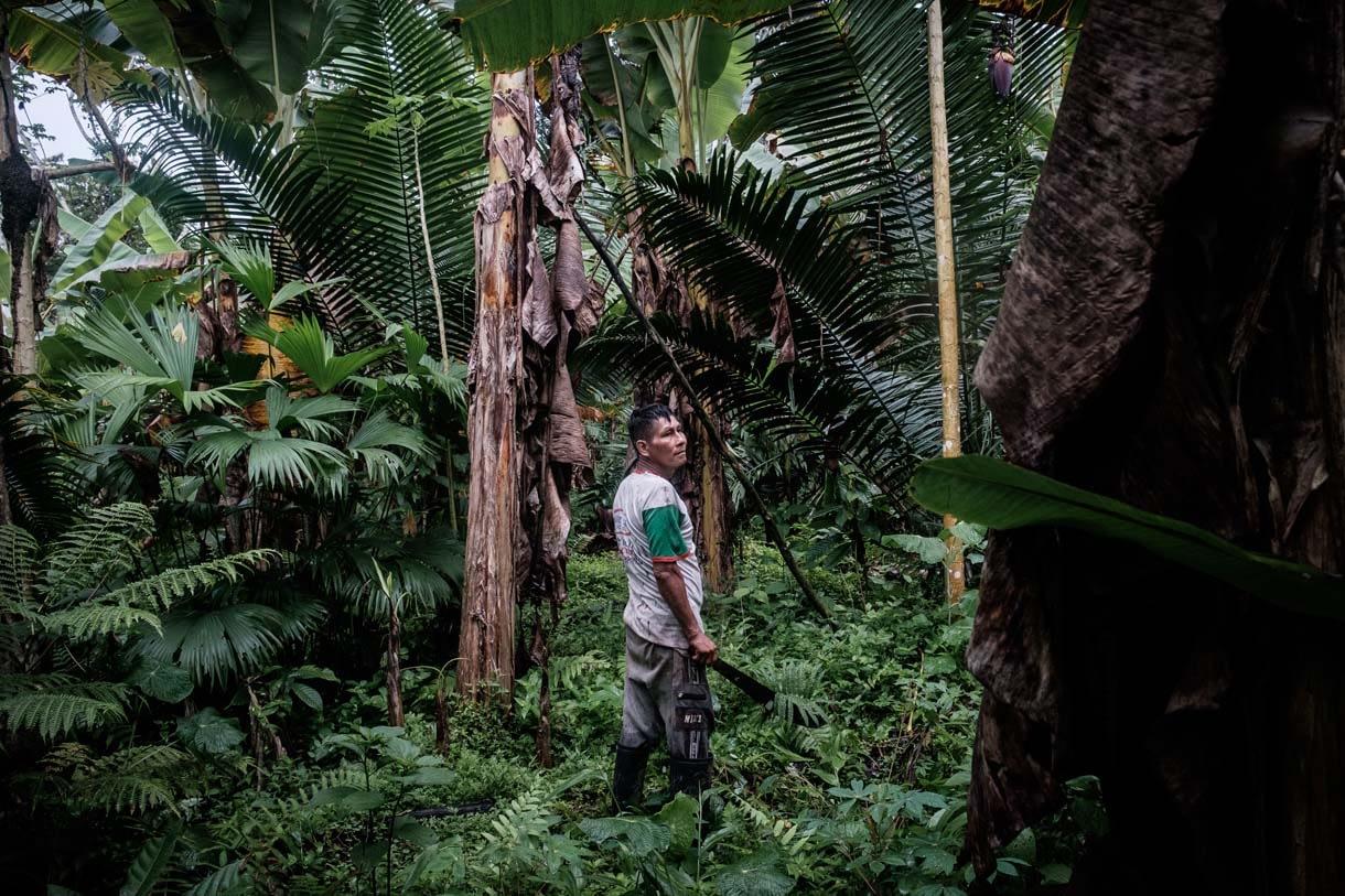 The Amazon Synod: Plus Tard Sera Trop Tard